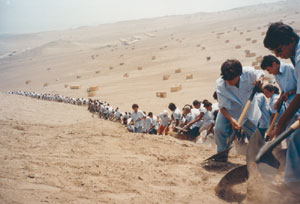 Francis Alÿs When Faith Moves Mountains