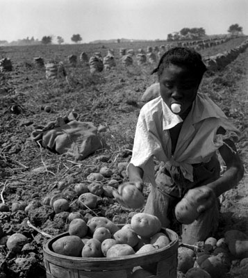 Eve Arnold Potata Pickers Daughter