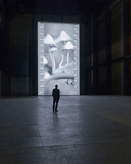 Tacita Dean Presents 'Film' at the Turbine Hall