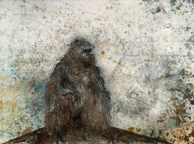 Miquel Barceló la solitude organisative