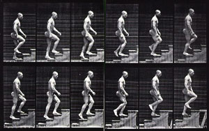 Eadweard Muybridge Stairs