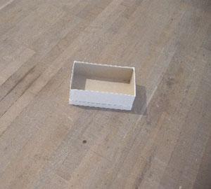 Gabriel Orozco Empty Shoebox 1993