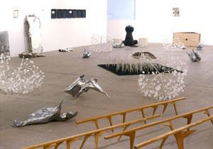 Gabriel Orozco Penske Project