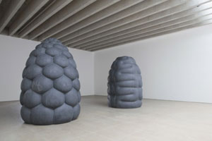 Peter Randall-Page Corpus and Fructus 2009
